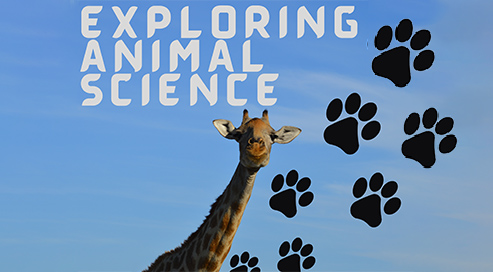 explore animal sci